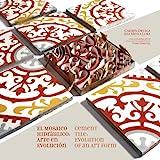 Zementfliese: Evolution einer Kunstform / El Mosaico Hidraulico: Arte en evolucion (englische und...