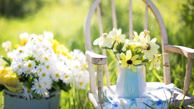 Gartengestaltung – Ideen und Planung: Was gibt es zu beachten?