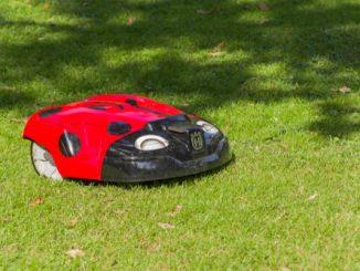Ein roter Mähroboter mäht den grünen Rasen