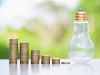 Münzen und eine Glühbirne vor grünem Hintergrund