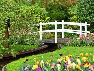 Schöner Garten mit Holzbrücke, Bach und Blumenbeet