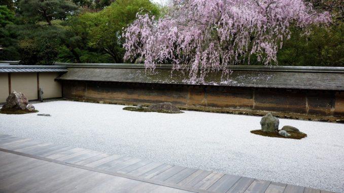 Fotos eines schönen japanischen Gartens